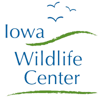 Iowa Wildlife Center Logo